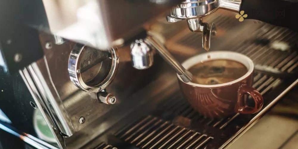 咖啡胶囊和咖啡店的咖啡到底有什么区别?插图2
