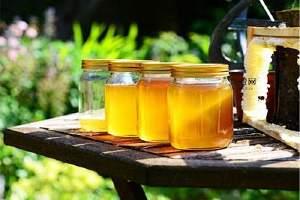 夏季纯蜂蜜必须放电冰箱吗,纯蜂蜜放电冰箱会结晶体吗缩略图