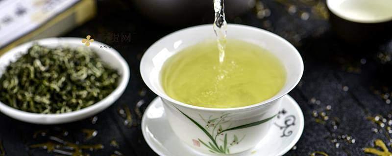 绞股蓝能和茶叶一起泡水喝吗,绞股蓝和茶叶一起泡的比例是多少插图