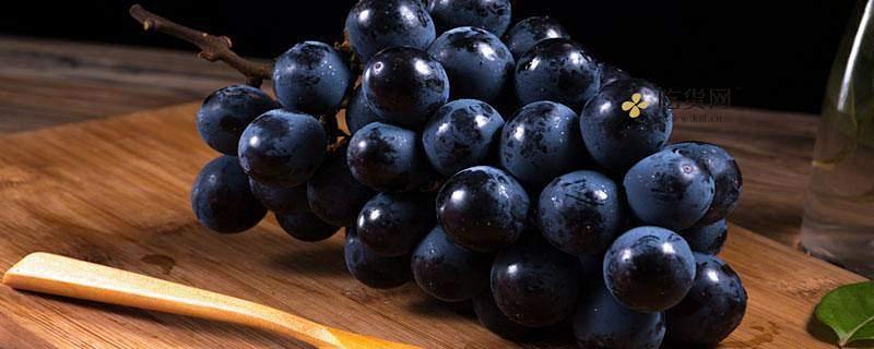 葡萄吃多了会怎么样,葡萄一天吃多少颗合适缩略图