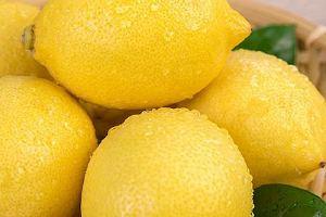 小宝宝能吃柠檬吗,小宝宝多少能吃柠檬缩略图