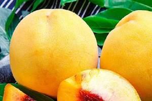 吃黄桃会胖吗,减肥可以吃黄桃吗缩略图