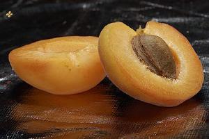 黄桃为何全是水果罐头,黄桃水果罐头为什么有异味缩略图