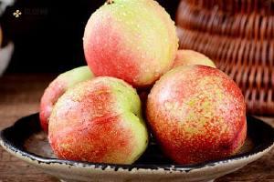 黄桃和酸牛奶能一起吃吗 吃了黄桃多长时间能够饮用酸奶缩略图