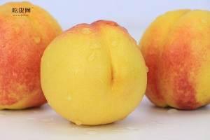 夏季的桃子如何存储,夏季桃子储存有什么方法缩略图