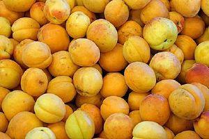 黄桃是性热或是寒性,黄桃吃完大会上火吗缩略图