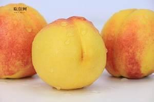风湿病黄桃可以吃吗,痛风不能吃哪些缩略图