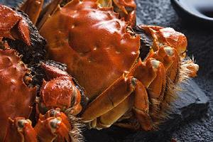 大闸蟹放电冰箱怎么保存,大闸蟹冷藏后还能吃吗缩略图