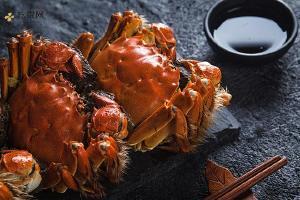 大闸蟹身体有生长激素吗,大闸蟹如何冷藏效果非常的好缩略图
