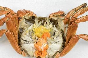 大闸蟹什么季节吃最好是,大闸蟹何时发售,大闸蟹何时吃最好是缩略图