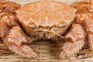 大闸蟹煮熟了能冷藏吗,大闸蟹煮熟了怎么保存缩略图