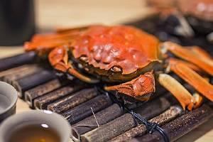 大闸蟹吃公的或是母的,公大闸蟹和母大闸蟹的差别缩略图