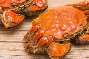 大闸蟹能够和冬瓜一起吃吗,大闸蟹和冬瓜一起什么人不宜吃缩略图