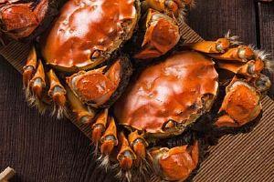 大闸蟹里边有裂头蚴吗,杀掉大闸蟹里裂头蚴的方式缩略图