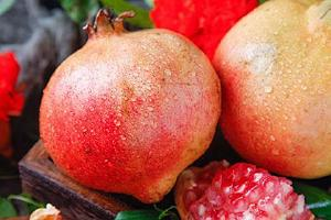 软籽石榴几月份完善,软籽石榴的籽能吃吗缩略图