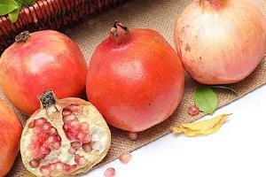 软籽石榴能够储存多长时间,软籽石榴怎么保存不容易坏缩略图