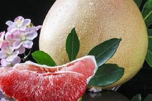 白柚和红柚哪个糖分高,糖尿病人吃红心柚还是白心柚缩略图