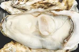 生蚝蒸多久最美味,生蚝蒸或是煮美味缩略图