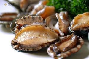 女士吃鲍鱼有哪些好处呢 吃完能养颜美容缩略图