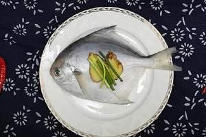 金鲳鱼的作用与功效,金鲳鱼的营养成分缩略图