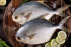 孩子吃金鲳鱼益处,小宝宝多少可以吃金鲳鱼缩略图