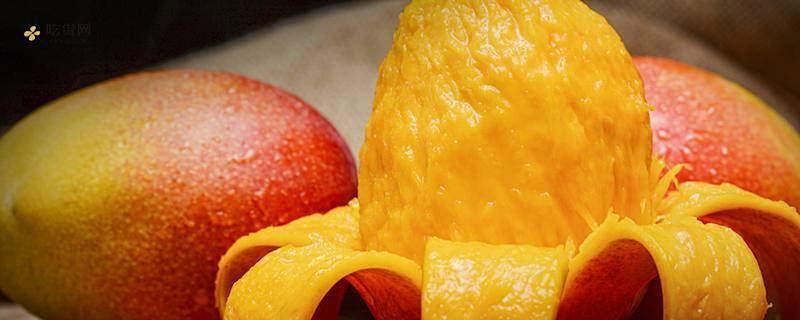 吃芒果的7大忌讳,青芒冬季可以吃吗缩略图