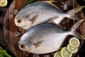 白鲳鱼怎么做好吃,白鲳鱼有什么普遍吃法缩略图