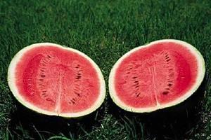 西瓜吃多了会小产吗,孕妇可以吃西瓜吗缩略图