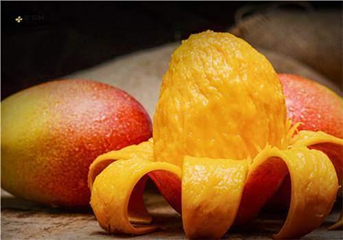 熟芒果怎么保存,保存芒果的注意事项缩略图