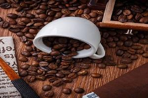 新鮮的咖啡豆是什么样子的,怎么判断咖啡豆是不是霉变缩略图