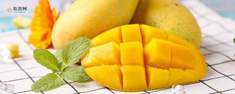芒果和什么吃会中毒,吃了芒果不能吃什么插图