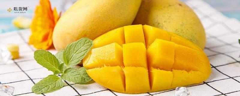 芒果和什么吃会中毒,吃了芒果不能吃什么缩略图