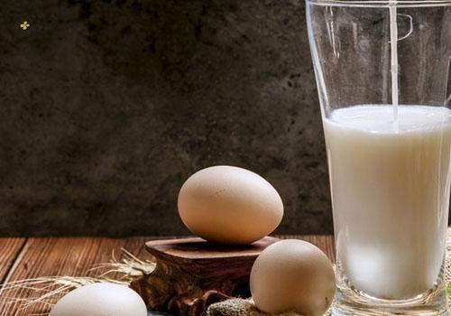 芒果牛奶能一起吃吗 蜜枣和牛奶能一起吃吗插图