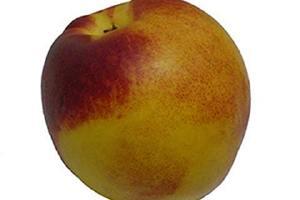 荔枝和油桃能一起吃吗,油桃不可以和什么一起吃缩略图