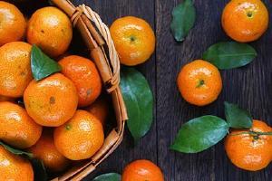 荔枝桔子能一起吃吗 吃橙子什么作用缩略图