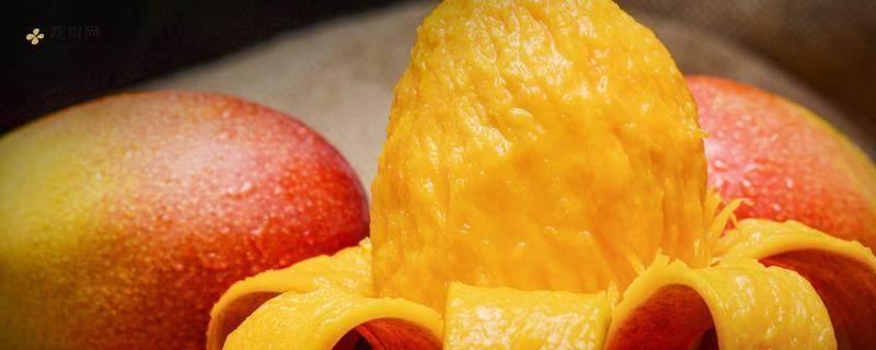 晚上喝酒了能吃芒果吗,喝酒吃芒果过敏怎么办插图