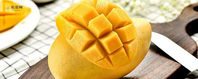 芒果吃多了会怎么样,青芒一次吃多小量不容易造成容易上火缩略图