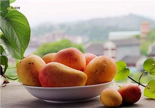 芒果上有黑点还能吃吗,芒果怎么样保存缩略图