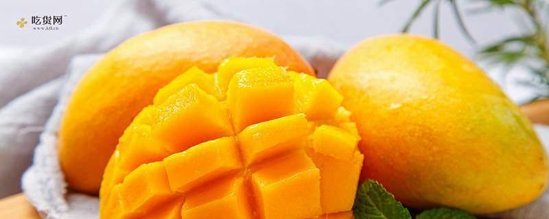吃芒果会长胖吗 晚上吃芒果胖吗缩略图