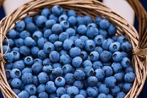 吃蓝莓排便会黑吗,排便呈墨绿是大肠癌吗缩略图
