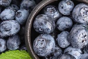 蓝莓是否越大越好,蓝莓吃完有什么益处缩略图