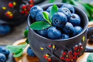 蓝莓要洗吗,蓝莓用哪种洗比较好缩略图