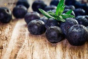 孕妇可以吃蓝莓吗 孕妇吃蓝莓对胎宝宝有哪些好处呢缩略图