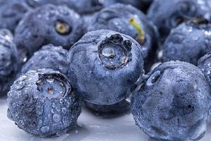 蓝莓能立即吃吗,蓝莓是全部吃下去吗缩略图