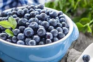 蓝莓吃是多少粒会中毒了,吃完蓝莓恶心呕吐是怎么回事缩略图