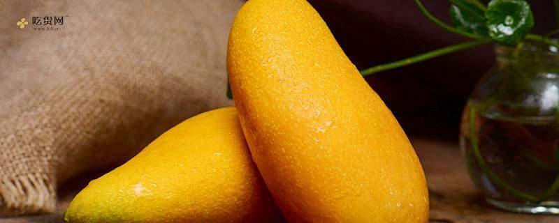 更快崔熟青芒方式,崔熟青芒放香蕉苹果或是iPhone好缩略图