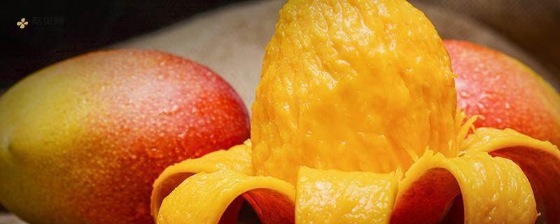 芒果和椰汁能一起吃吗,椰汁不能和什么一起吃插图