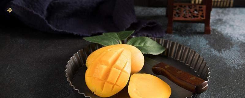 芒果可以和茶一起吃吗 芒果和哪些食物不能同食插图