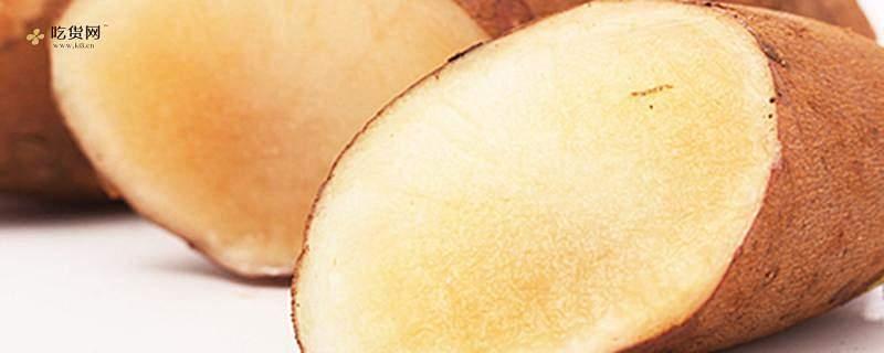 雪莲果和芒果一起吃吗,雪莲果和芒果怎么一起吃缩略图