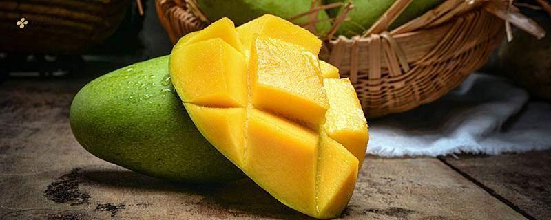 刚吃芒果能够饮用酸奶吗,芒果酸奶能够一起吃吗缩略图
